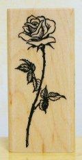 長い茎の薔薇