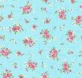 可愛いお花〜Bluerose〜