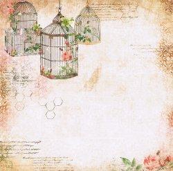 画像1: 花と外国語と鳥籠