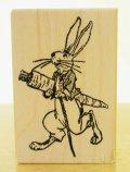 ミスターバニー(ウサギ君)