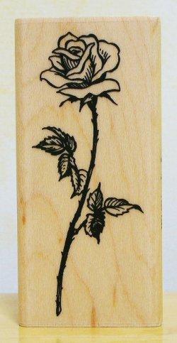 画像1: 長い茎の薔薇